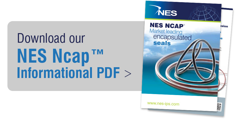 Download our NES Ncaps Informational PDF
